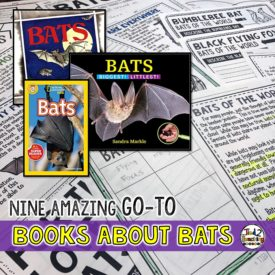 9 Amazing Go-To Books About Bats
